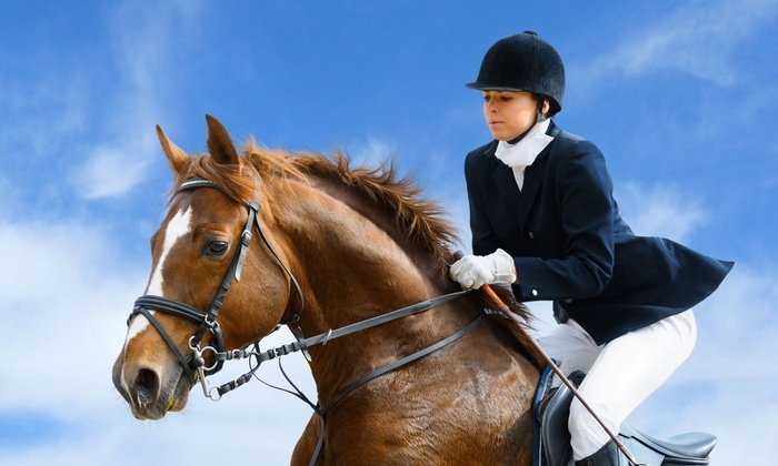 Las Vegas Horse Properties and riding lessons